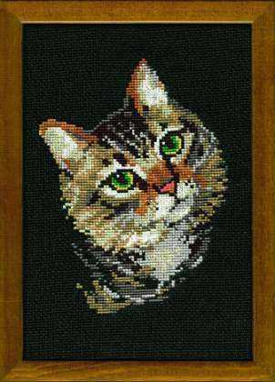 766 «Серая кошка»