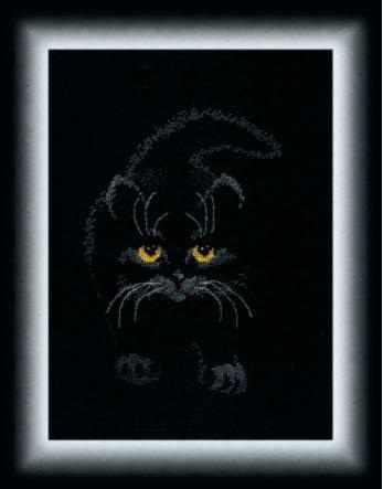"""М-142 """"Черный кот"""""""