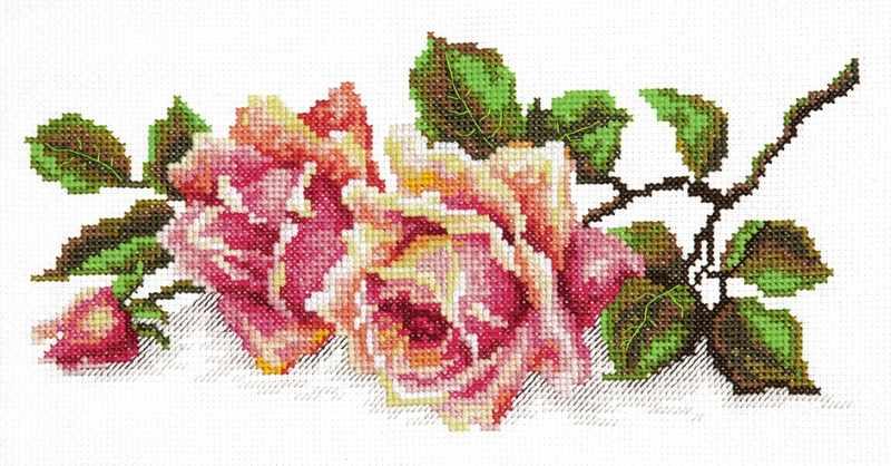 40-48 Аромат розы