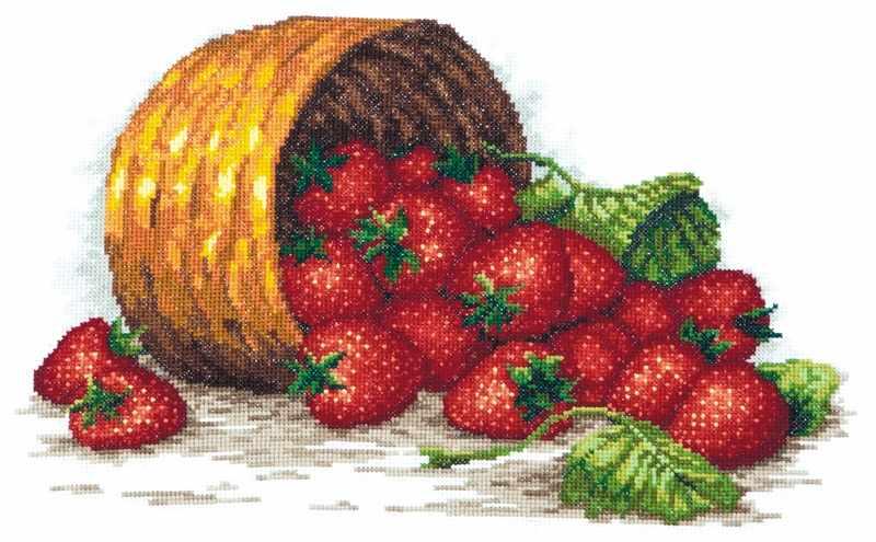 55-08 Сладка ягода