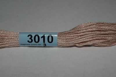 3010 (Гамма)