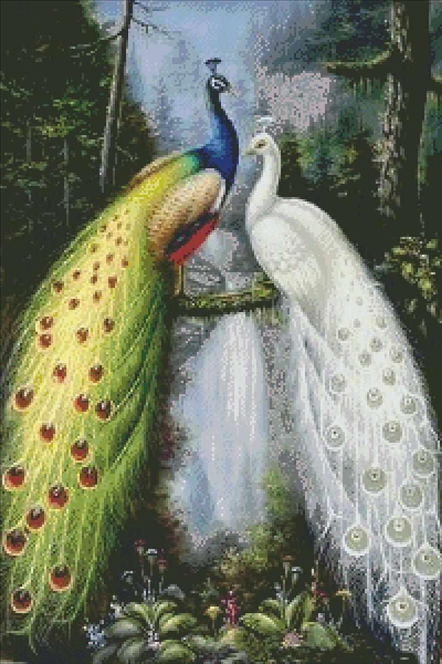 алмазная картина павлины