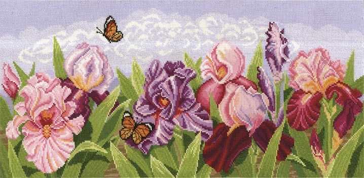 Т-11 Торжество цветов. Ирисы