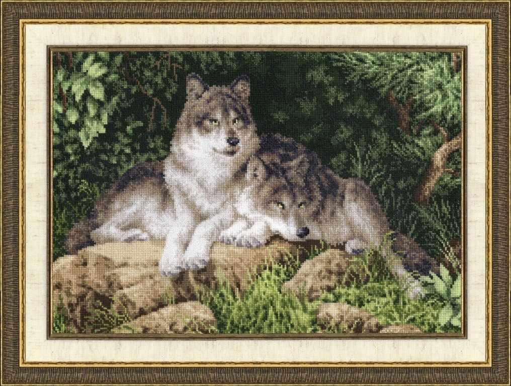 ДЖ-027 Лесные хищники. Дикие животные