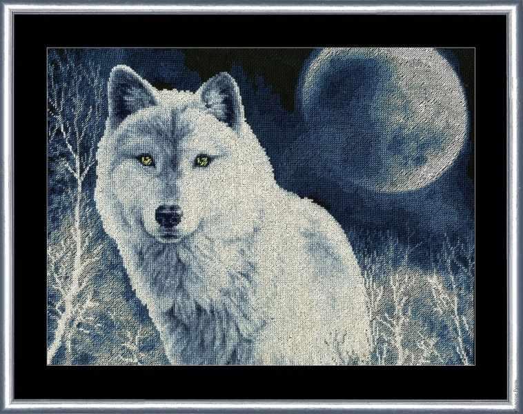 ДЖ-029 Белый волк. Дикие животные