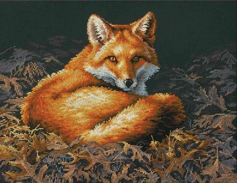 35318-70-DMS Sunlit Fox