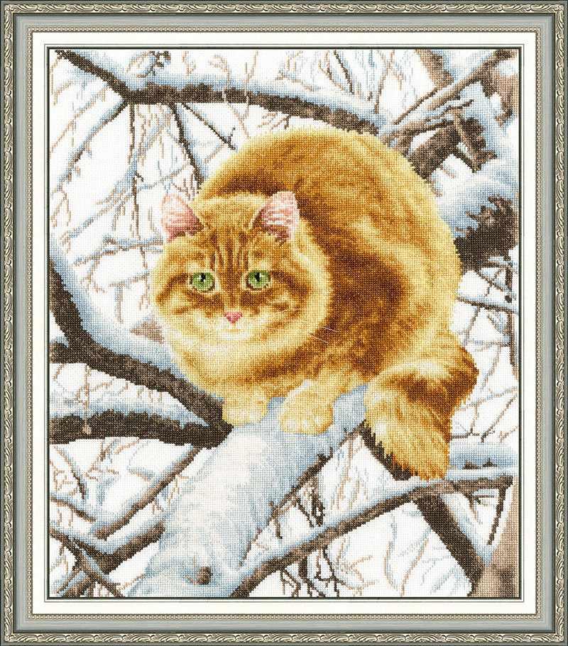 К-010 Рыжий кот. Кошки