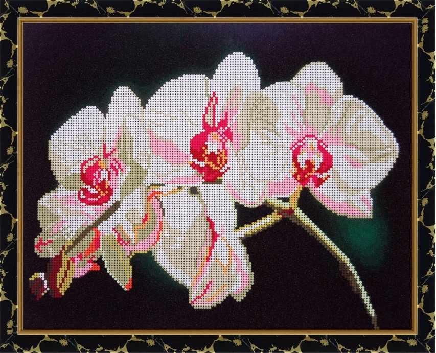 Б-3138 - Белая орхидея - схема для вышивания (Алёшкина любовь)