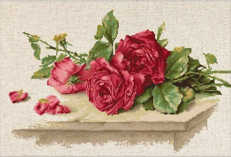 BL22411 Красные розы