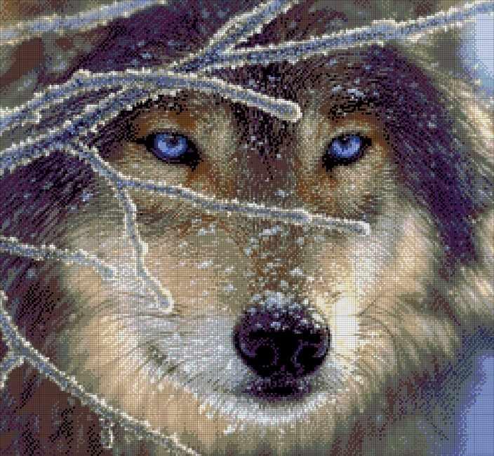 26-1901-НВ Волк - набор для вышивания