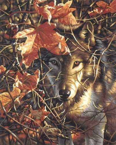 91362-DMS Волк в осеннем лесу