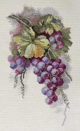 04.009.11 Синий виноград