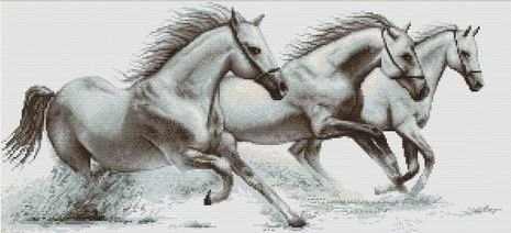 B495 Белые лошади