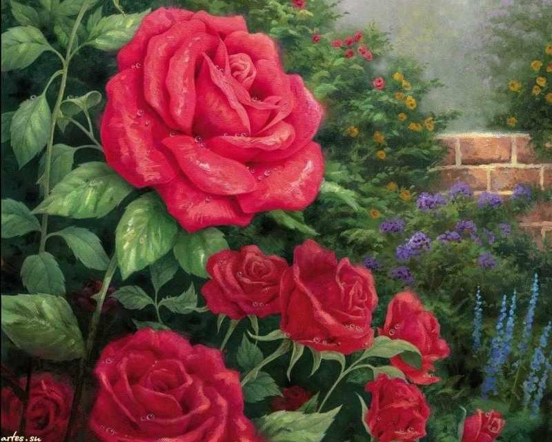 R-900 Розовый куст - мозаика Милато
