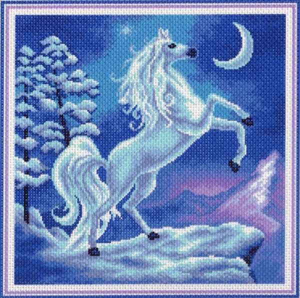 1034 Волшебство - рисунок на канве (МП)