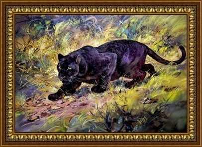 Y-030  Чёрная пантера