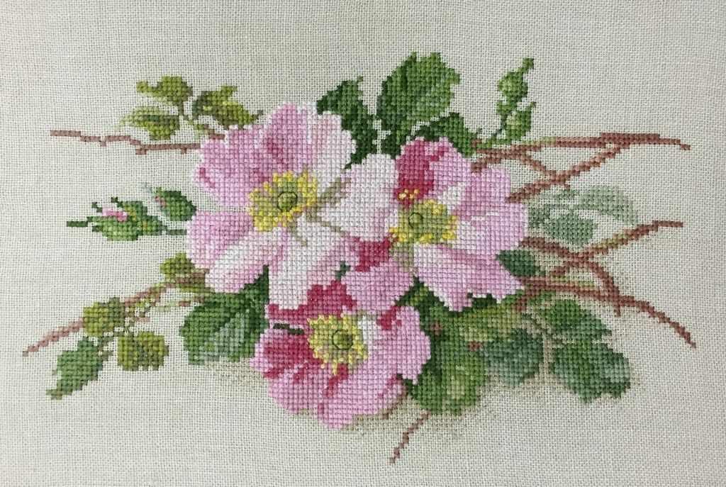 06.002.26 Розовые нежные
