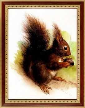 041 Белочка с орешком