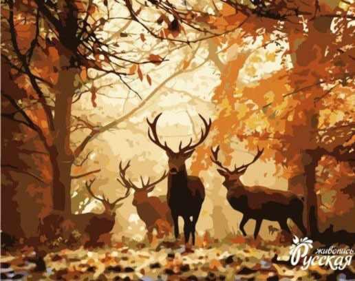 H001 Олени в лесу
