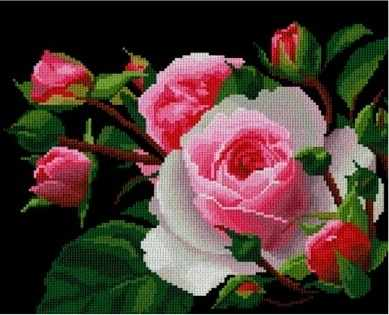 0002 Роза (Nitex)