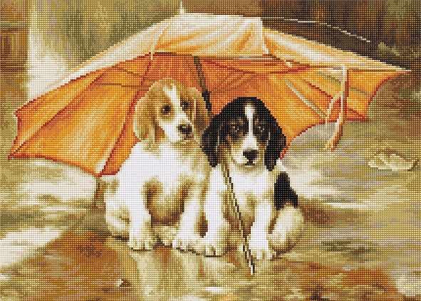 B550 Двое под зонтом