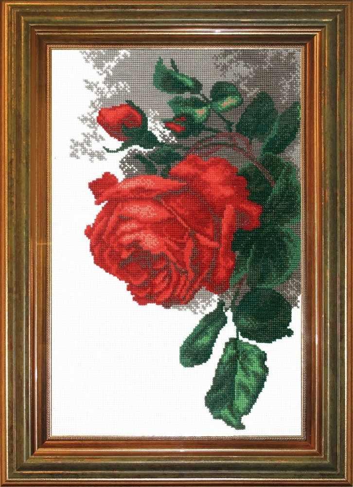 """441 """"Роза"""""""