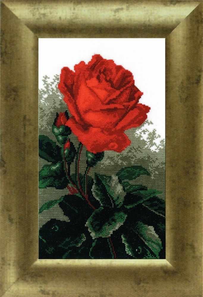 """442 """"Роза красная"""""""