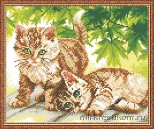 640 симпатичные котята