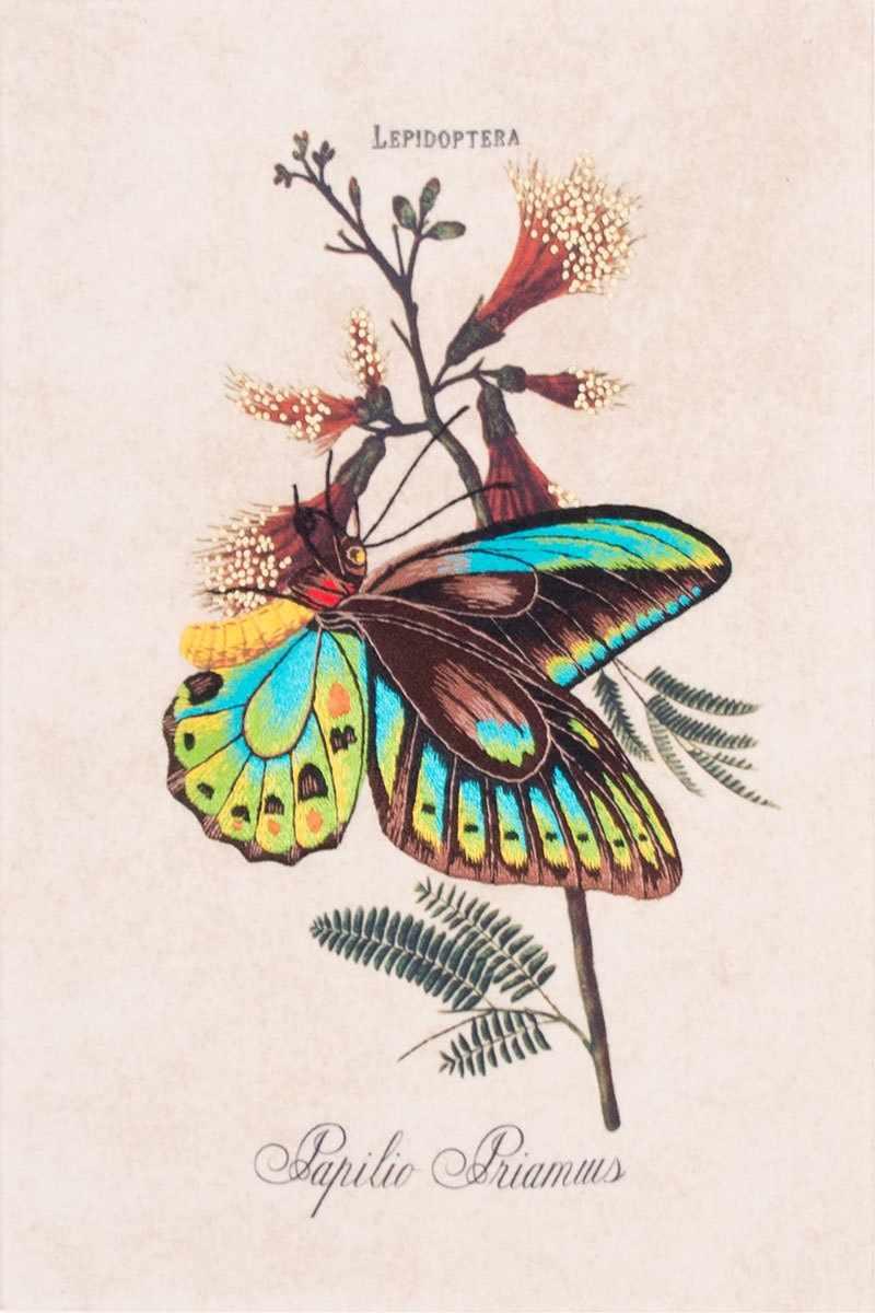 5514/ГЛ Сад бабочек - набор для вышивания