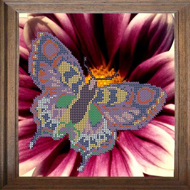В304 Бабочка - схема для вышивания (FeDi)