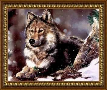 F-63 Зимний волк