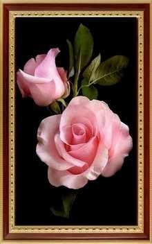 099 Розовые розы