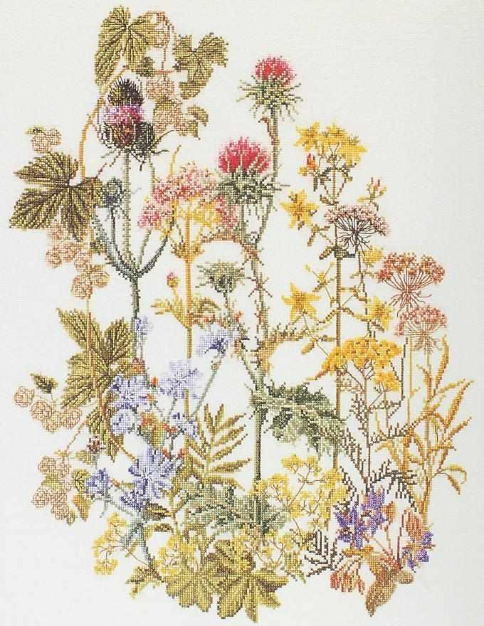 0424 Лекарственные травы
