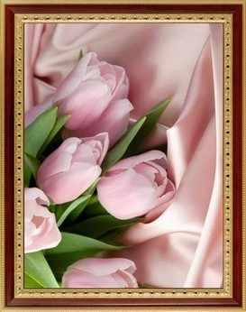058 Розовые тюльпаны