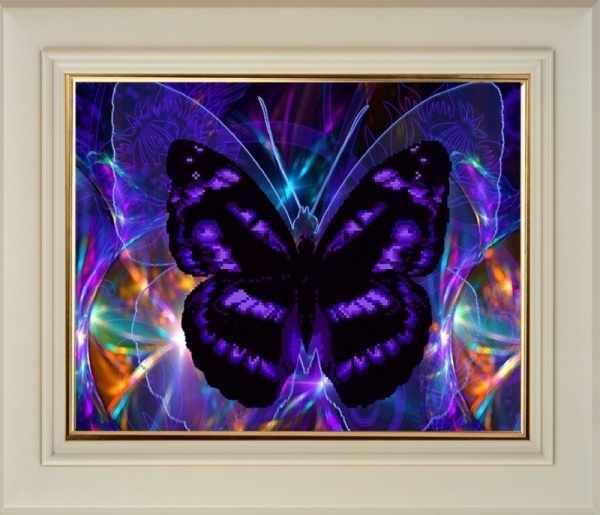 CK013 Бабочка