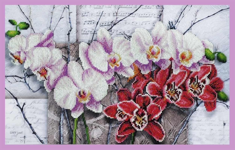 Р-263 Симфония орхидей - набор для вышивания