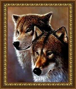 G-078 Пара волков