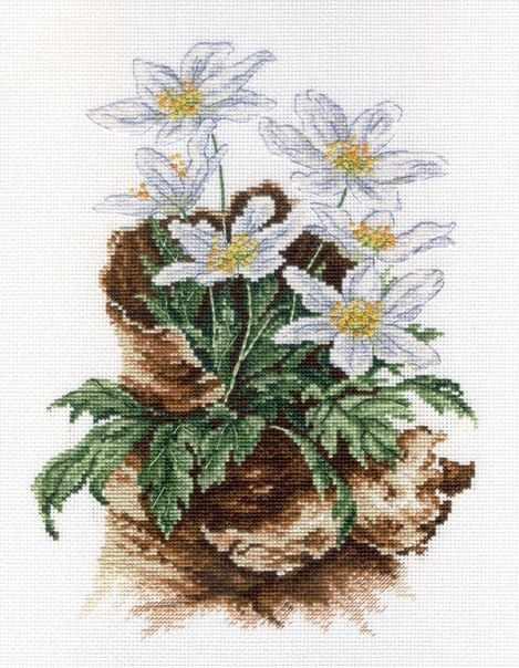НВ-567 Первоцветы