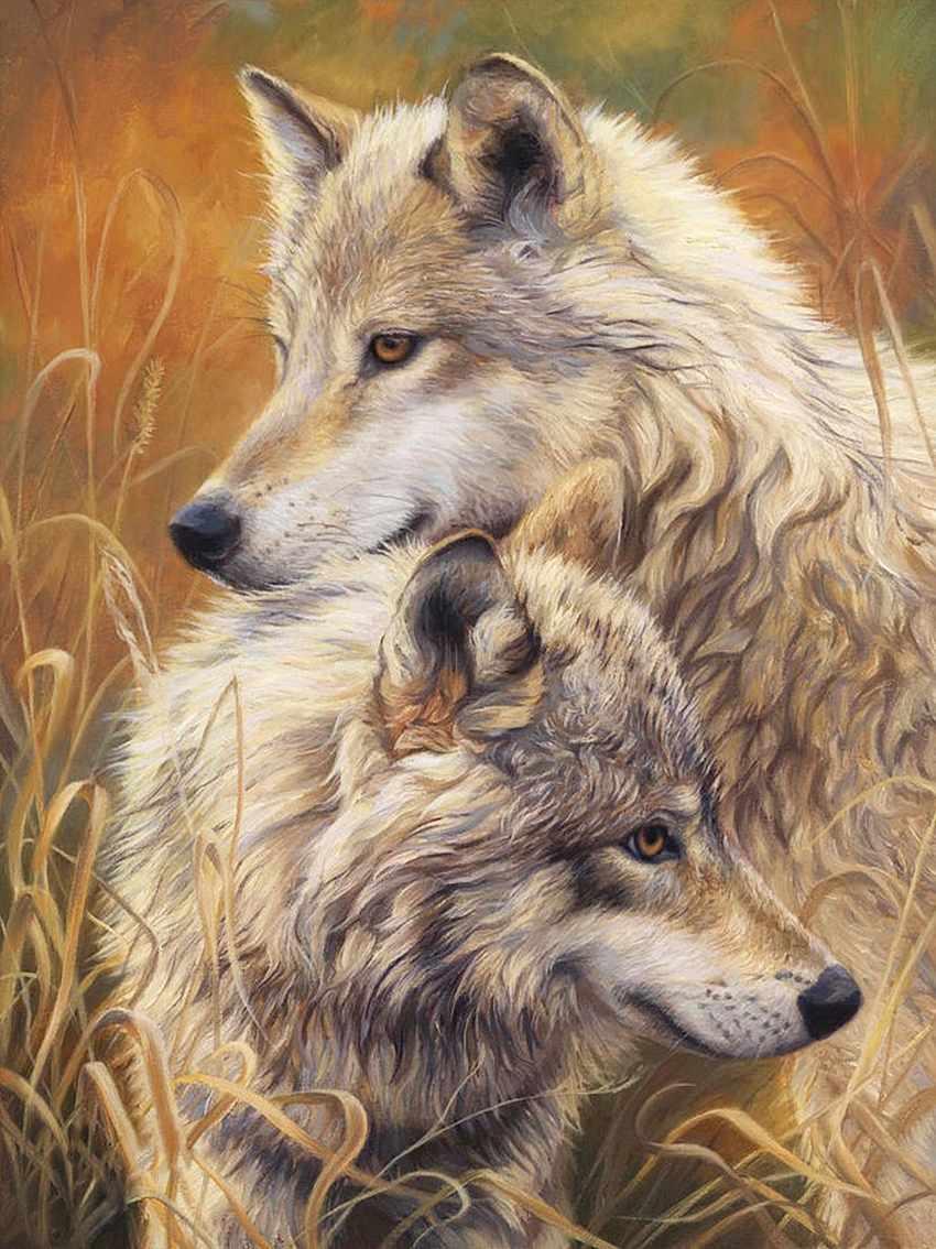 Алмазная вышивка Волчья нежность (АЖ-1403) - картина стразами