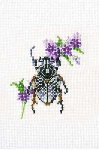 EH367 - Жук на медунице