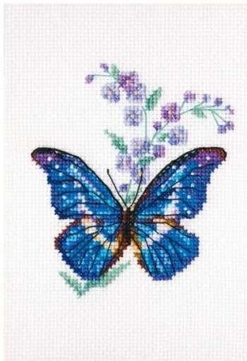EH364 - Синюха и бабочка