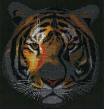 0250 Тигр в ночи