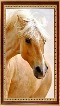 153  Блондинка