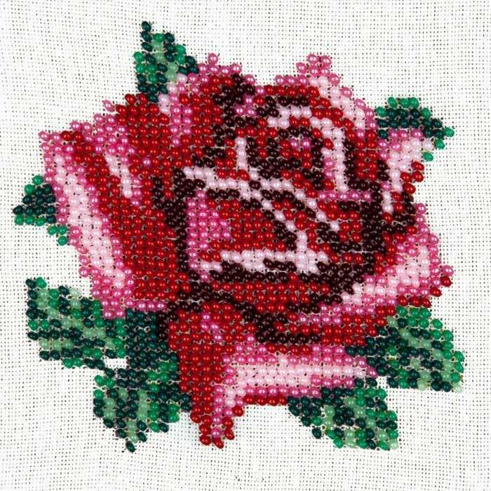 L426 Нежная роза