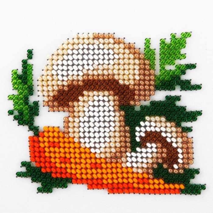 L498 Морковь и грибы