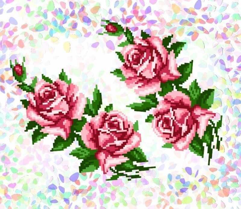 K202 Розы