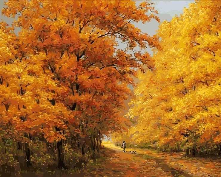 174-AB Осенний день - раскраска (Белоснежка)