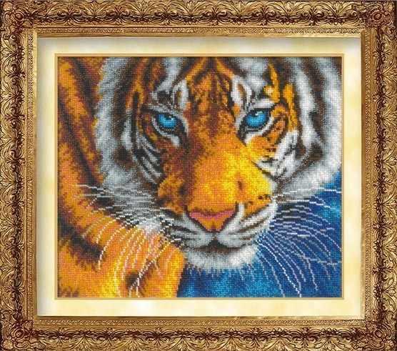 1016 Взгляд тигра