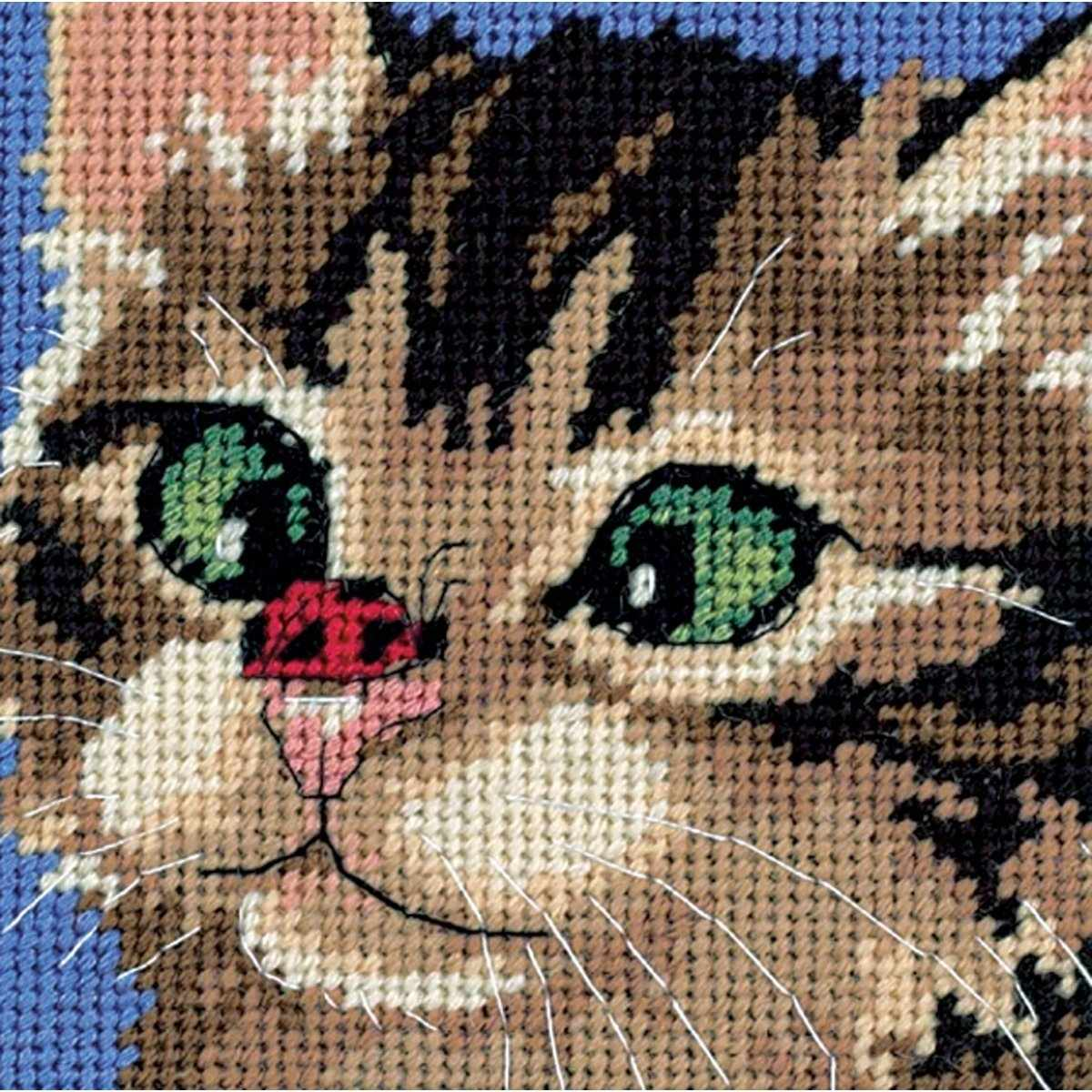 7206-DMS Cross-Eyed Kitty