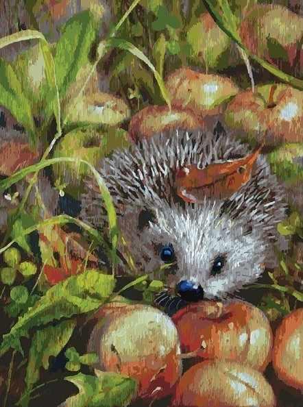 140-AS Яблочный ёжик  - раскраска (Белоснежка)